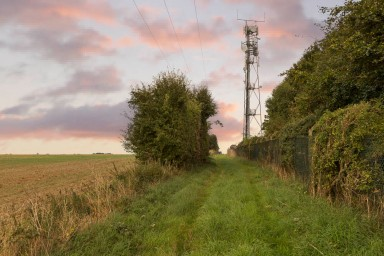 middle lane mast attempt one